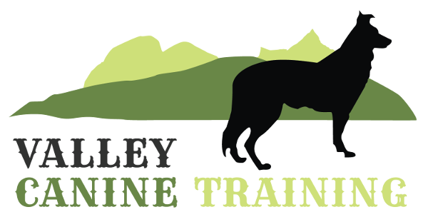 Dog training Vernon and Lumby BC
